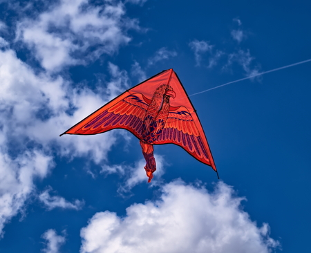 Red kite in blue sky Stock Photo