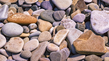 Large beach pebble background or texture close-up Stock Photo