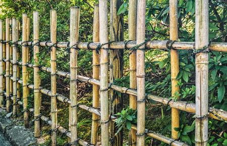 Japanese traditional bamboo fence background