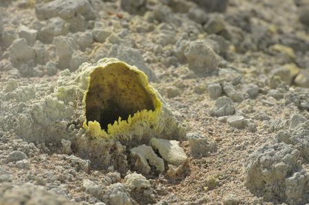 fumarole: A fumarole. Shallow depth of field, selective focus. Golovnin caldera. Also known as Tomari-yama. Kunashir Island, Russia. Stock Photo