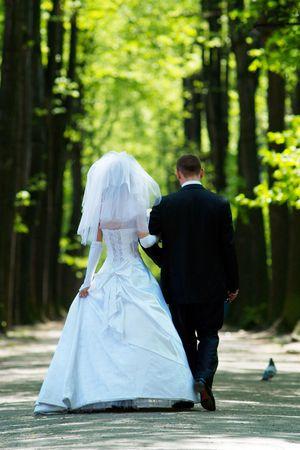 Couple of newlywedses Stock Photo