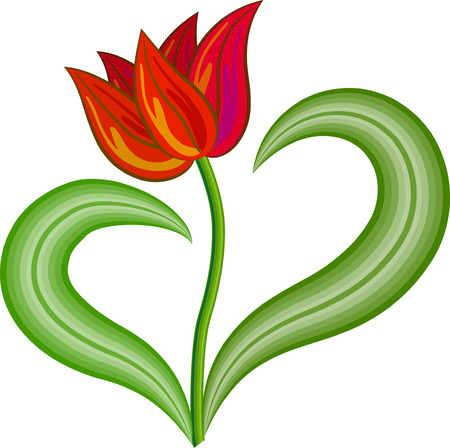 Red tulip flower with two leaves Illustration