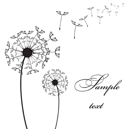 Graphic two dandelion on the wind vector picture Stock Vector - 5566145