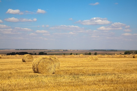 Landscape of field with haybales and sky with clouds