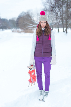 offended: Offended woman with little dog chihuahua in winter park