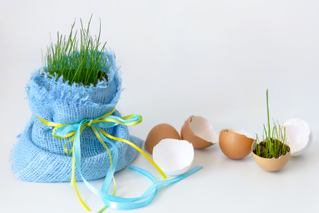 Eggs shell and young grass with copy space on white background