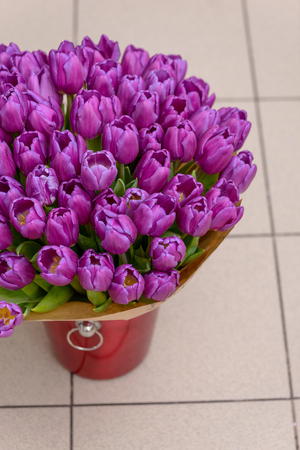 Purple tulips in bucket for flowers with copy space for greetings Stock Photo