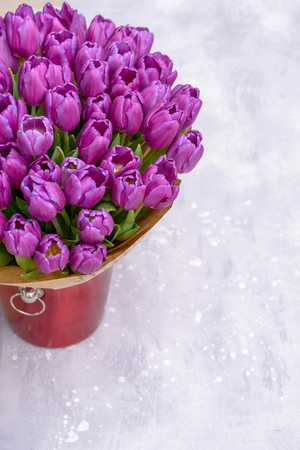 Purple tulips in bucket on gray background with copy space