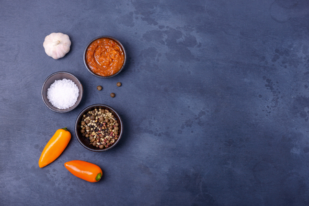 Sauce with salt and pepper and garlic. Spices for food with copy space