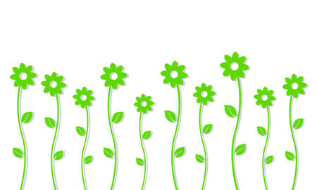 single flowers: Green background single flowers on a white background