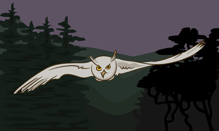 outstretched: Flying owl with outstretched wings on the background of nature