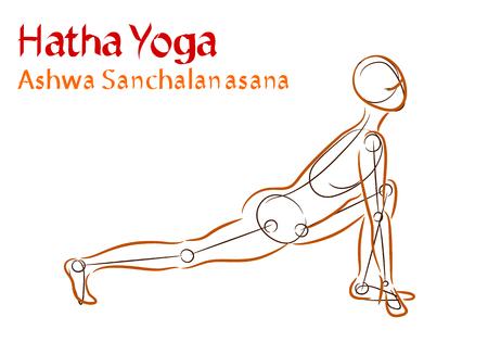 Vector Hatha Yoga Ashwa Sanchalanasana on a white background