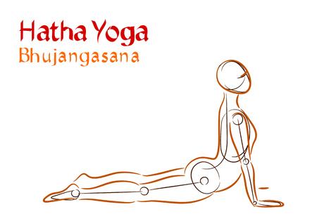 Vector Hatha Yoga Bhujangasana on a white background