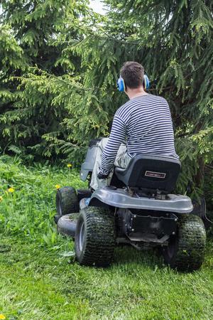 mows: The man in a striped shirt mows a lawn on a lawn-mower.