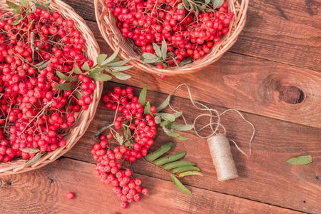 sorbus: Ripe bunches of rowan berries in wicker baskets. Stock Photo