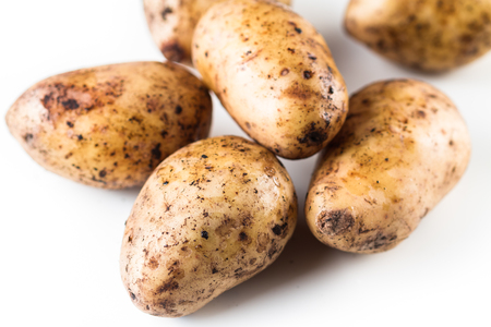 Fresh  harvested organic potatoes on a white background. Closeup. 版權商用圖片