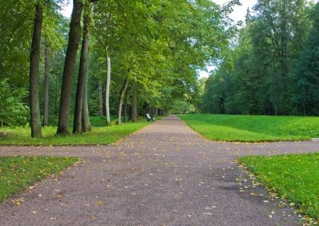 path in park in the early autumn