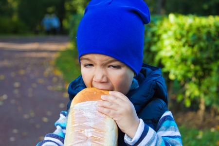 portrait of a boy with white bread photo