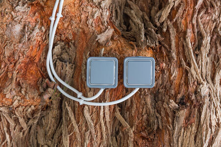 two electrical switch mounted on a tree trunk ( light switch environment concept) photo