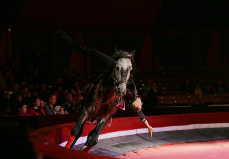 St. Petersburg - 26 September: unidentified rider performs an acrobatic program( dzhigitovka) during the show and laughter, risk, and miracles! at the circus Ciniselli on 26 September 2015 in St. Petersburg, Russia.
