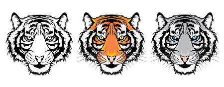 Set of tiger heads