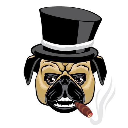Pug in a hat smoking a cigar.