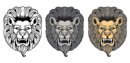 Set of angry lion heads.