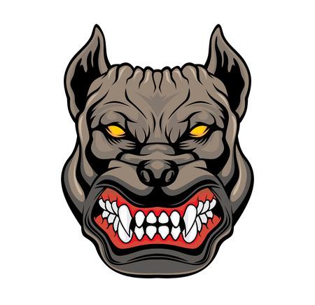 Cabeza de pitbull enojado. Ilustración de vector