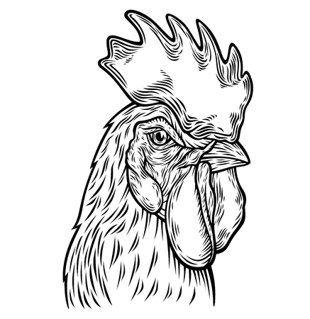 Hand drawn rooster head illustration.