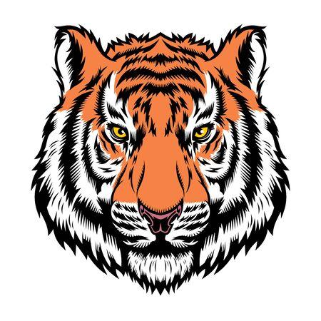 Tigre, cabeza de felino salvaje.