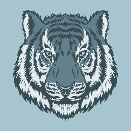 Tiger, wild big cat head.