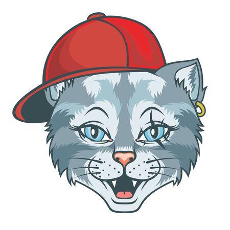Cat in hip-hop hat.