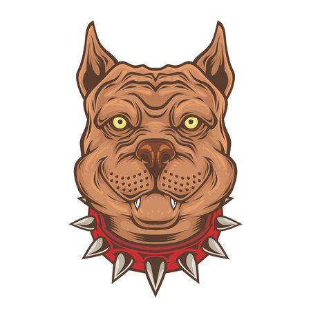 American Pitbull Terrier dog head. Çizim