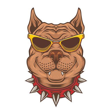 American Pitbull Terrier dog wearing sunglasses.