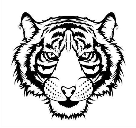 Ilustración de tigre, cabeza de gato grande salvaje. Ilustración de vector