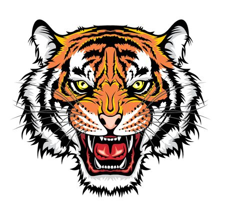 Illustration of Angry tiger head. Illustration