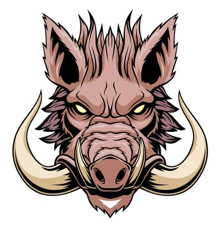 Illustration of Wild boar head mascot. Vektorové ilustrace