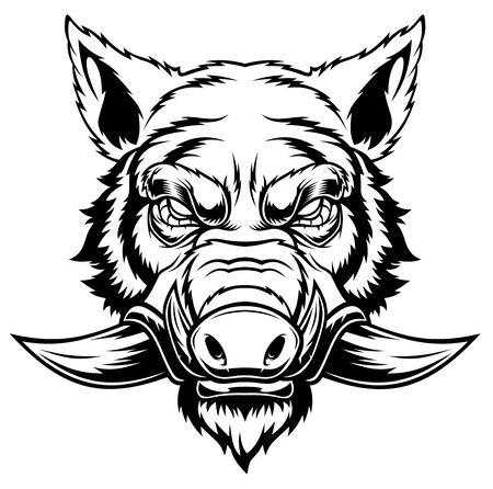 Illustration of Wild boar head mascot. Ilustración de vector