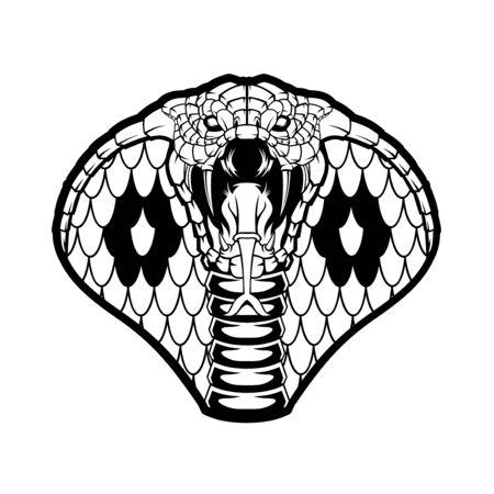 Illustration of Cobra head.