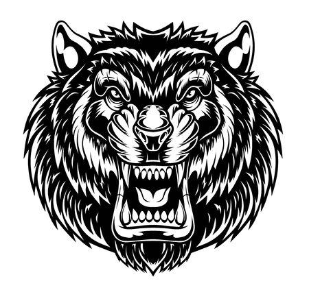 Angry tiger head illustration Ilustração