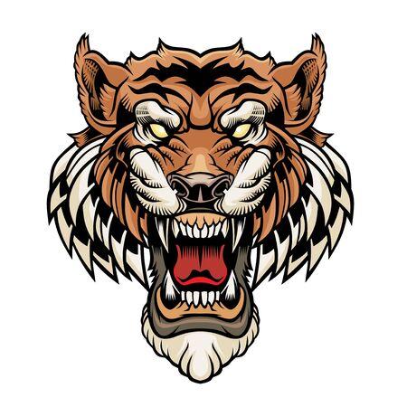 Tête de tigre.