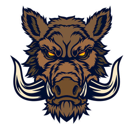 Wild boar head mascot. Vector illustration for use as print, poster, sticker,   tattoo, emblem and other.