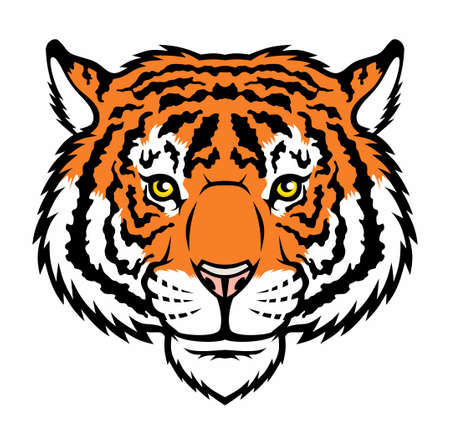 Tiger, wild big cat head. Vector illustration for use as print, poster, sticker, logo, tattoo, emblem and other.