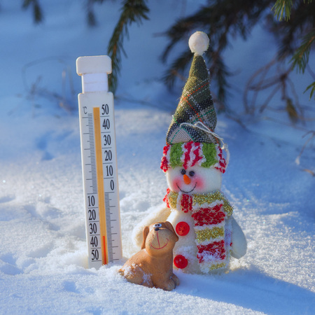 thermometer, dog and snowman in the snow on a cold day