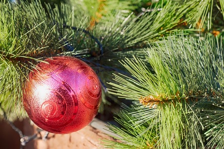 Christmas background - baubles and branch of spruce tree.