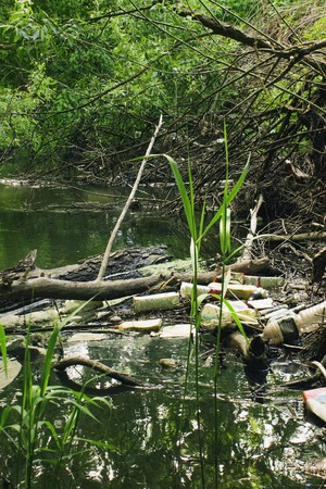 Pollution of the river with household waste