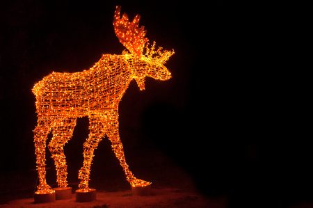 Christmas deer  made of LED garlands on black background. Christmas and new year card. Garland decoration for New Year. Stock Photo