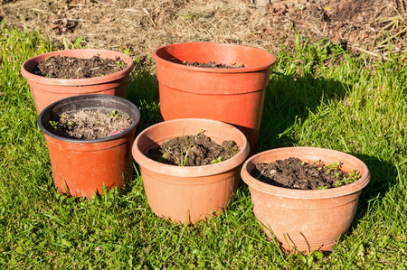 Big colorful pots on the grass in the garden. Pots filled with earth of garden decoration. Set of five pots of different sizes and shapes.