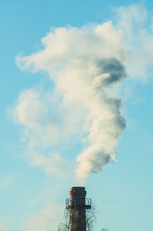 White smoke from the factory pipe near tree on blue sky close-up. Industrial chimney with heavy white cloud of pollution. Stock Photo