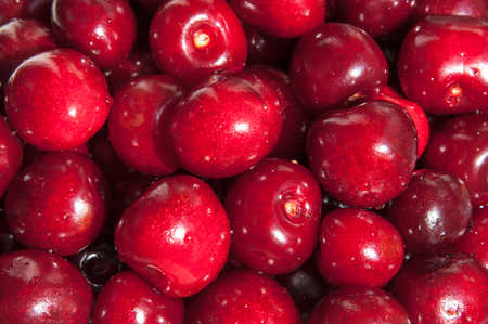 Background of ripe sweet cherry with drops of water. Berries of a sweet cherry. Group of cherries forming a texture.